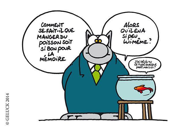 """Résultat de recherche d'images pour """"humour mémoire"""""""